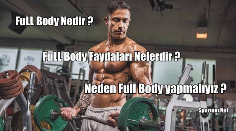 full body antrenman programı