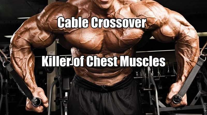 Cable Crossover Exercise